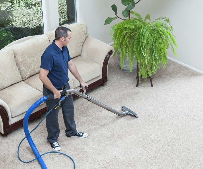 Guidelines To Find The Most Efficient Carpet Cleaning Services For Your Home