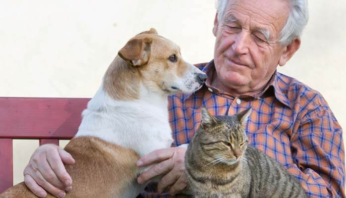 5 Uplifting Reasons Pets are Helpful in Assisted Living