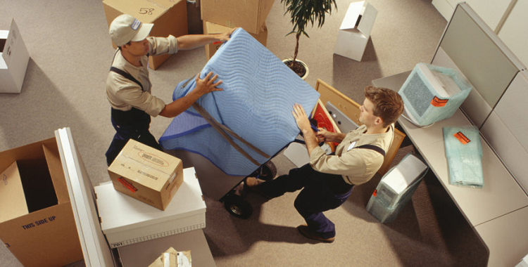 Five Reasons to Hire Professional Removalists When Moving Into Your New Home